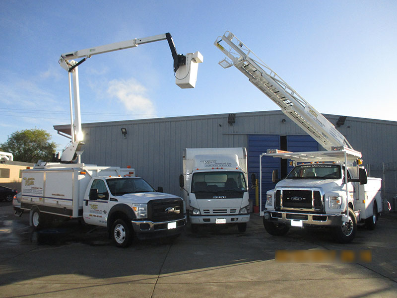 web-pic-34-vehicles---raised-buck-truck-&-ladder-truck-with-box-van